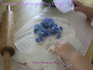 Lav Play Dough Cover