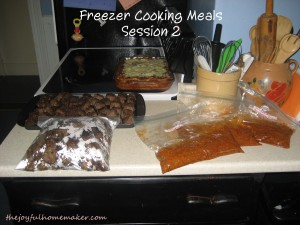 freezer cooking 2